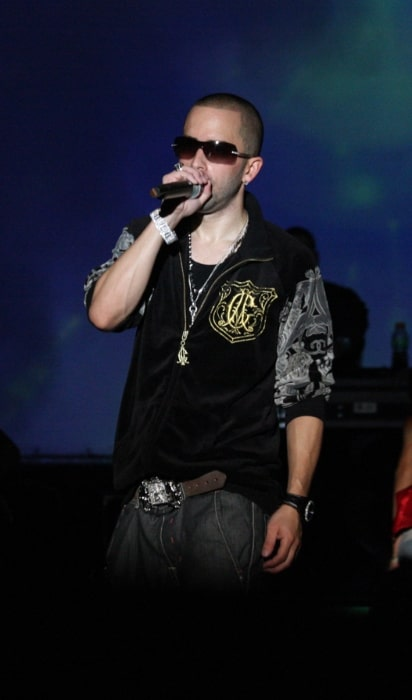 Yandel performing at a concert in 2008